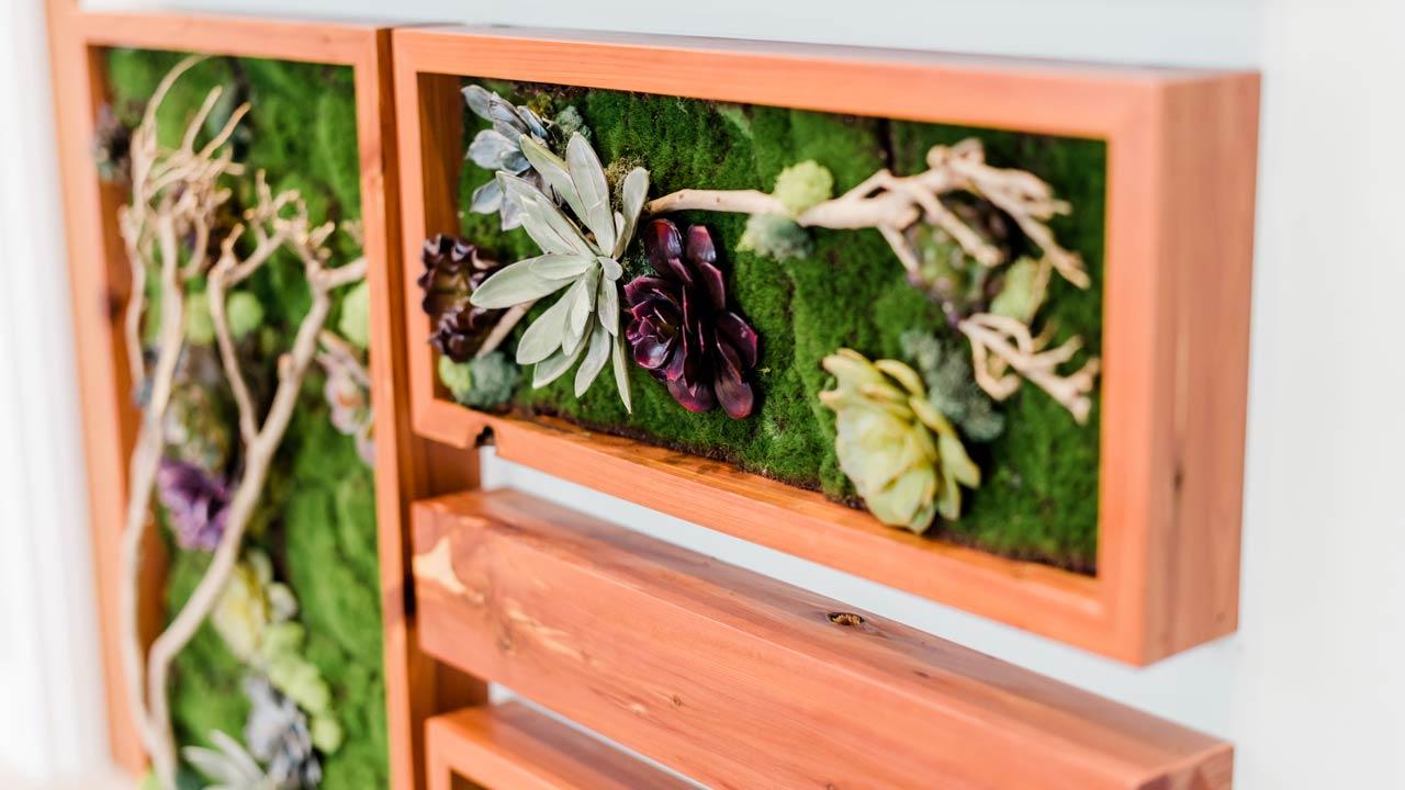 Natured inspired interior design